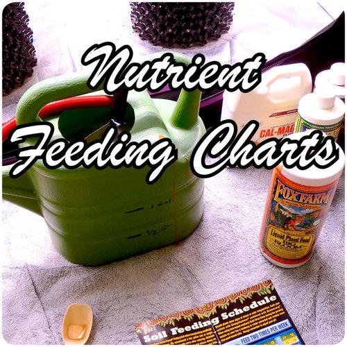 Cannabis Nutrient feeding guide